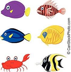 Tropical fish cartoon