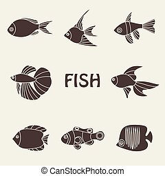 Vector illustration of tropical fishes icon