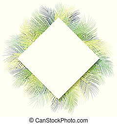 Tropical green palm leaves with white frame place for text isolated on white background