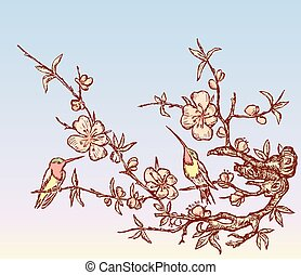 Vector illustration of two hummingbirds sitting on branches blooming cherry tree