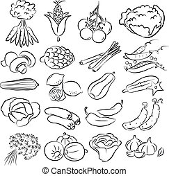 vegetables - vector illustration of vegetables collection in...