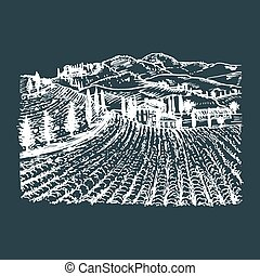 Vector illustration of vineyard. Hand sketch of villa, homestead in fields and hills. Drawn mediterranean landscape.
