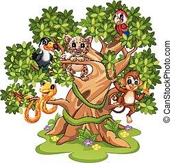 Wild animals cartoon on the trees
