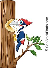 Woodpecker on the tree - Vector illustration of Woodpecker ...