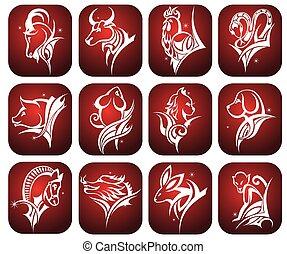 Vector illustration of zodiac