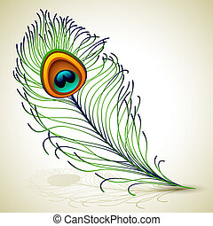 peacock feather - Vector illustration - peacock feather, EPS...