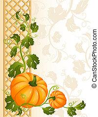 Vector illustration - pumpkin background
