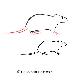 Rat - Vector illustration : Rat sketch on a white...