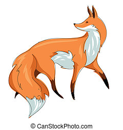 vector illustration red fox isolated