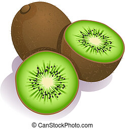kiwi - Vector illustration - ripe kiwi