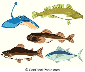 Vector illustration sea and seagoing commercial fish - ...