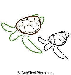 Sea Turtle - Vector illustration : Sea Turtle sketch on a...
