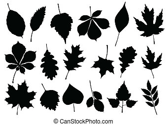 Vector illustration set of 18 autum