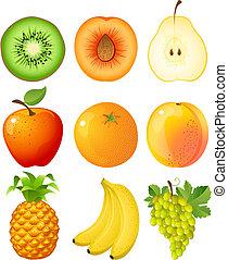 fruit - Vector illustration - set of fruits