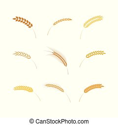 Vector illustration set of simple cereal ears icons in flat style.