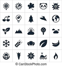 Vector Illustration Set Of Simple Natural Icons. Elements Planet, Solar Energy, Bird And Other Synonyms Bird, Summit And Ignite.