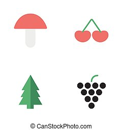Vector Illustration Set Of Simple Garden Icons. Elements Wine, Berry, Fungus And Other Synonyms Wineglass, Grape And Fungus.