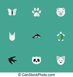 Vector Illustration Set Of Simple Wild Icons. Elements Foot, Moth, Cat And Other Synonyms Pig, Piggy And Dolphin.