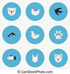 Vector Illustration Set Of Simple Wild Icons. Elements Panda , Cat , Fish Synonyms Foot, Rooster And Perch.