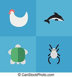 Vector Illustration Set Of Simple Zoo Icons. Elements Tortoise, Cock, Tarantula And Other Synonyms Tortoise, Grampus And Fish.