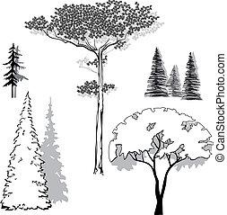 vector illustration set of trees