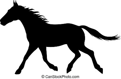 Vector illustration silhouette of a running horse