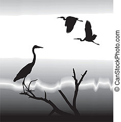 vector illustration silhouettes Herons on lake shore