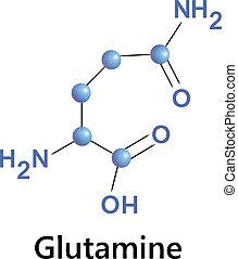 glutamine - Vector illustration, the chemical formula of...