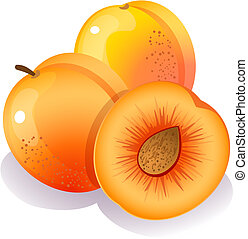 peach - Vector illustration - Three ripe peaches