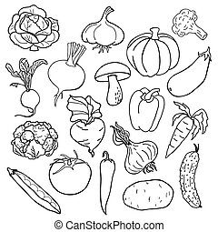 vector illustration - Vegetables