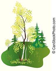vector illustration with autumn birch