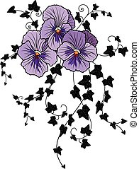 viola and ivy - vector illustration with flower of viola and...