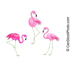 Vector illustration with funny pink flamingo. Paper flat design with exotic birds