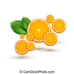 vector illustration with oranges
