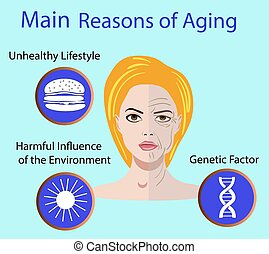Vector illustration with reasons of aging