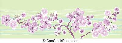 vector, ilustración, de, decorativo, sakura, branch., patrón...