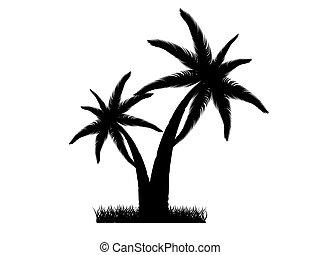 vector, ilustración, de, dos, árboles de palma