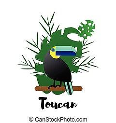 vector, ilustración, de, un, brillante, pájaro tropical, tucán