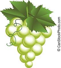 vector, ilustración, de, uvas