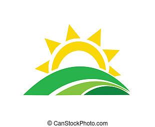 vector, ilustración, salida del sol, sol