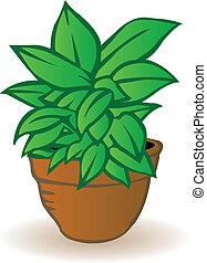 vector, ilustración, un, maceta, con, un, verde, flor