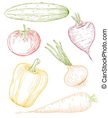vector, ilustración, vegetables.