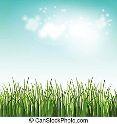 vector, ilustración, verde, verano, campo, con, flores, y, pasto o césped