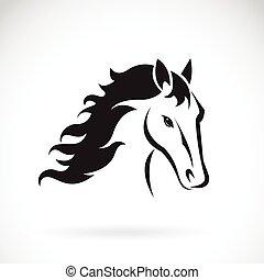 vector, imágenes, de, caballo, cabeza, diseño, en, un, fondo...
