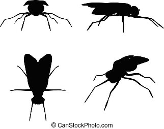 Vector Image - bug fly silhouette isolated on white background