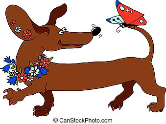 vector image dachshund