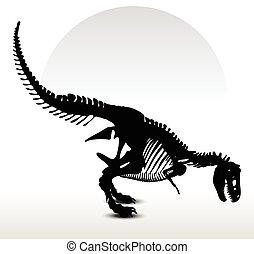dinosaurs trex skeleton - Vector Image - dinosaurs trex...