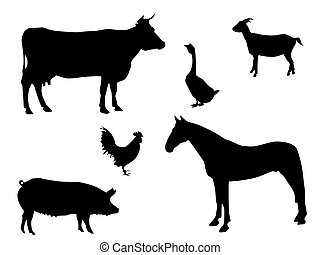 vector image which show the several silhouettes