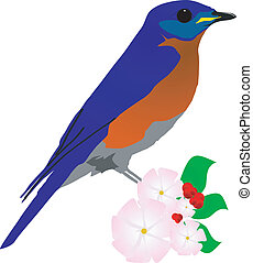 Vector  image of a bird on a branch