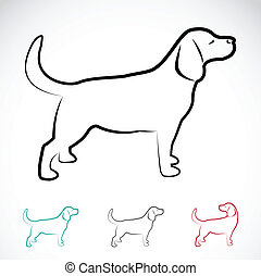 Vector image of a dog labrador on white background